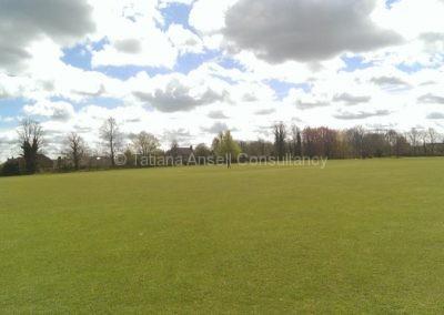 Спортивные поля Walden_School